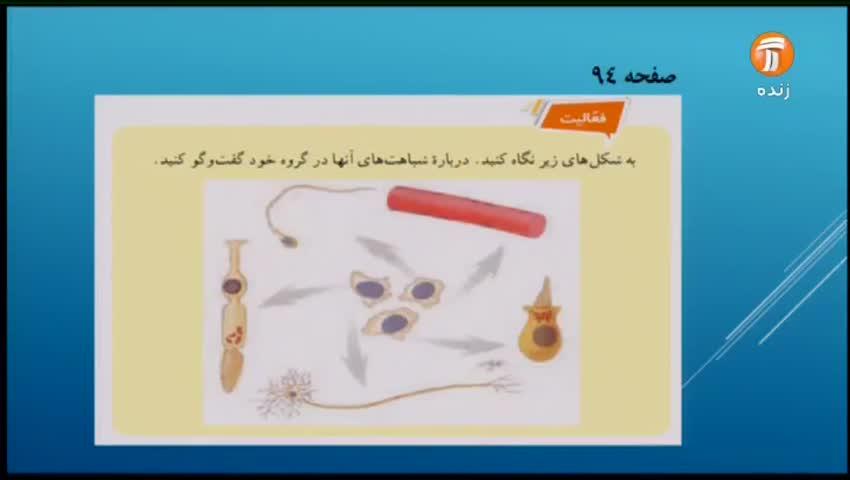 ویدیو آموزش فصل 11 علوم هفتم